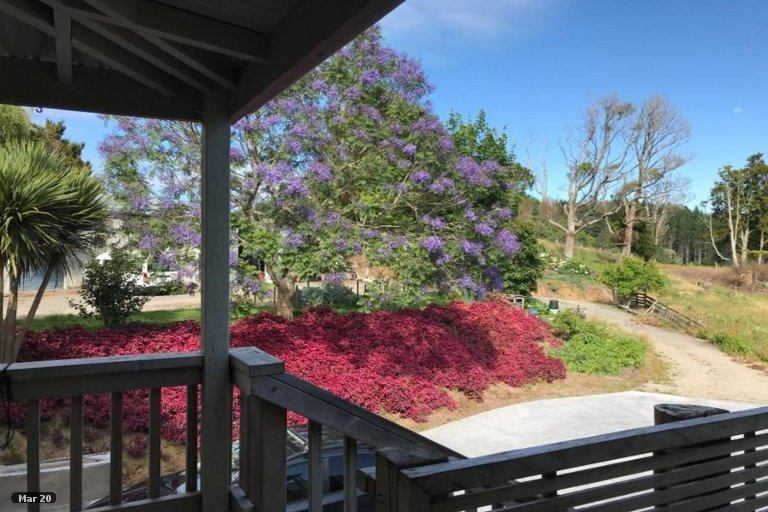 Property photo for 390 Rowe Road, Ohauiti, Tauranga, 3173