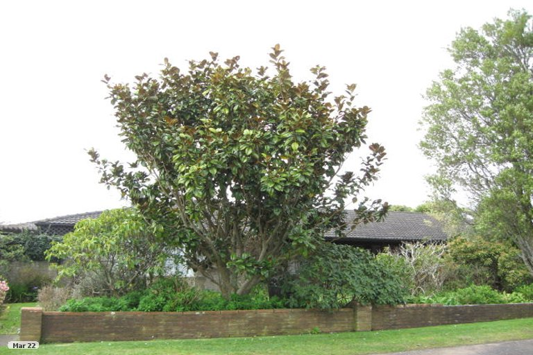 Photo of property in 7A Welbourn Terrace, Welbourn, New Plymouth, 4310
