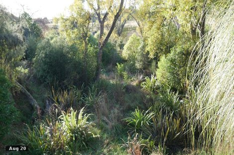 Photo of property in 338 Supplejack Valley Road Upper Moutere Tasman District