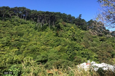 Photo of property in 2 Thule Street Aro Valley Wellington City