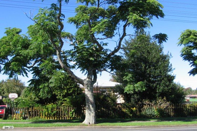 Property photo for 80 Arapuni Street, Putaruru, 3411