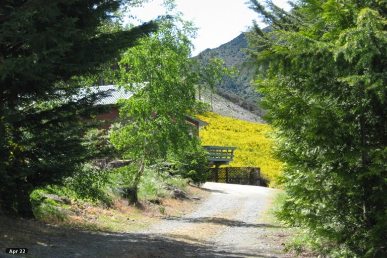 Property photo for 14 Acheron Heights, Hanmer Springs, 7334