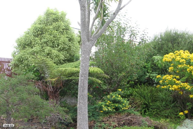 Photo of property in 13 Endymion Place, Half Moon Bay, Auckland, 2012