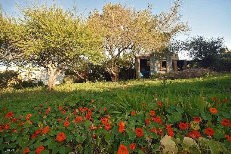 Property photo for 14 Komiti Road, Tinopai, 0593