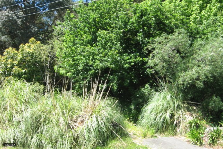Photo of property in 7 Darwin Road, Outer Kaiti, Gisborne, 4010