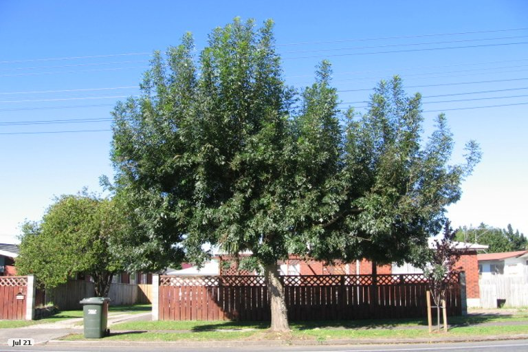 Property photo for 116 Arapuni Street, Putaruru, 3411