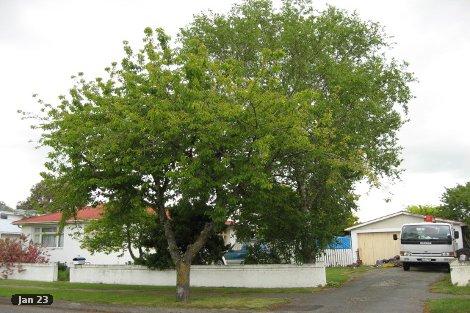 Photo of property in 1 Stephens Street Rangiora Waimakariri District