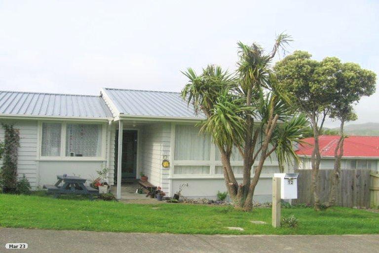 Photo of property in 12 Carbine Place, Ascot Park, Porirua, 5024