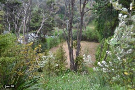Photo of property in 7 Anzac Road Gate Pa Tauranga City