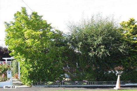 Photo of property in 12 Barnes Street Glenwood Timaru District